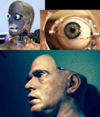 Animatronic head for the film 'Stag Night'
