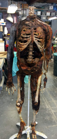 Decayed skeleton from the Fox show 'Sleepy Hollow'