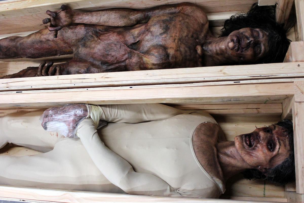 Generic Corpses